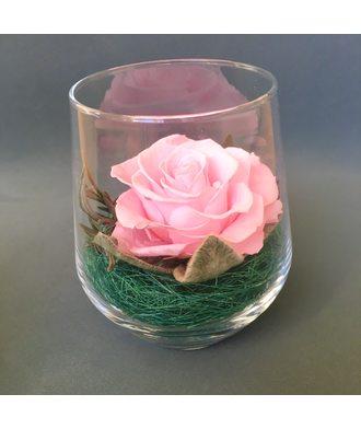 Роза в стаканчике (стаб. цветы)