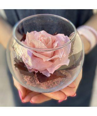 Роза в вазе (стаб. цветы)