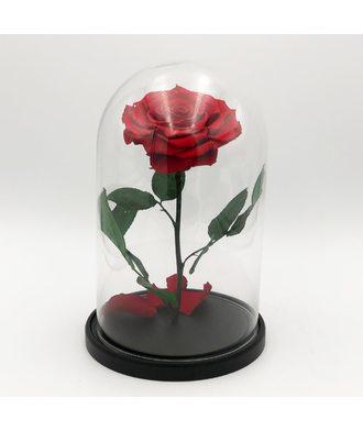 Роза в колбе VIP