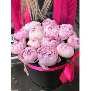 15 розовых пионов в коробке