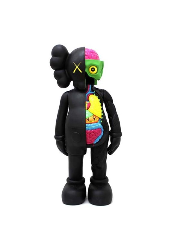 Kaws Dissected Companion