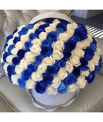 101 бело-синяя роза в коробке