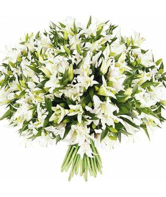 101 белая лилия