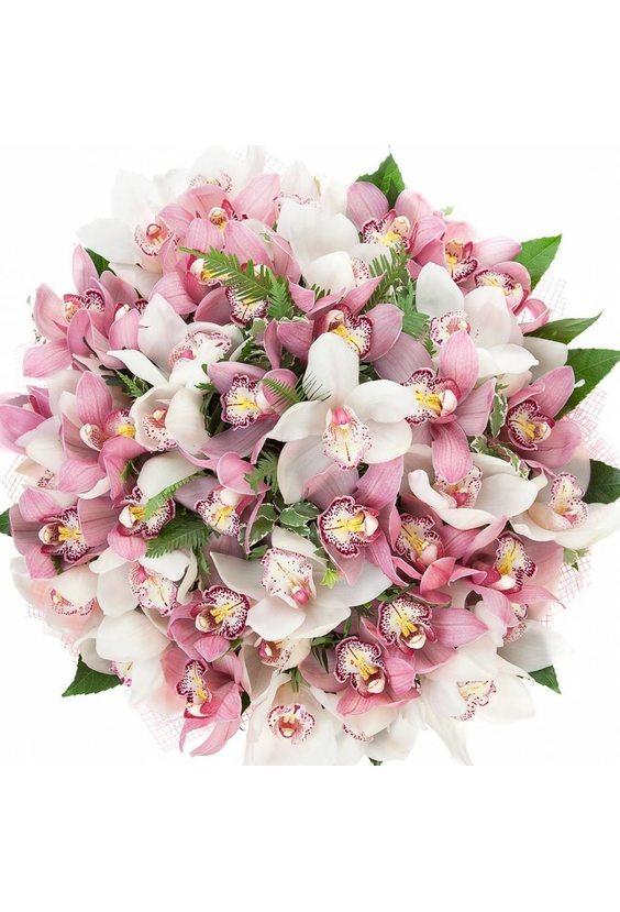 Букет 51 орхидея