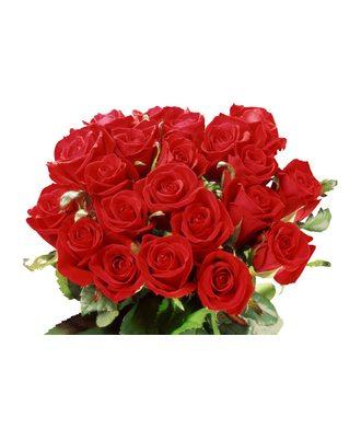 Букет № 28, 25 роз