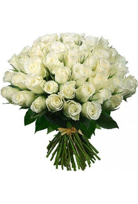 Букет № 29, 51 роза с большим бутоном!
