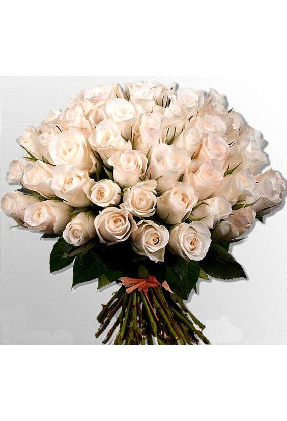 Букет № 66, 51 роза Голландия