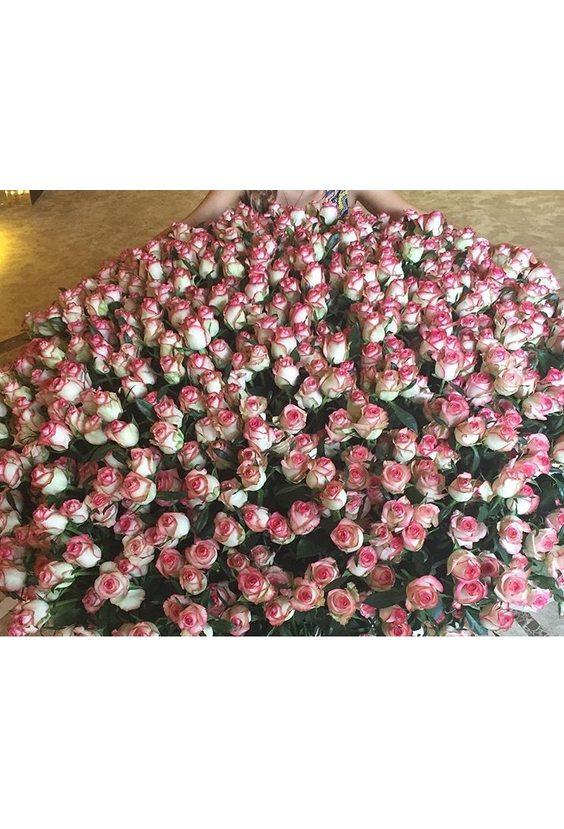 1001 розовая роза