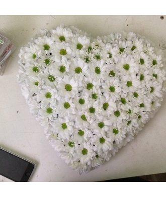 Сердце из хризантем большое