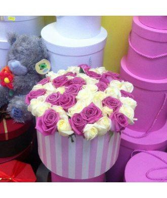 51 бело-розовая роза в коробке