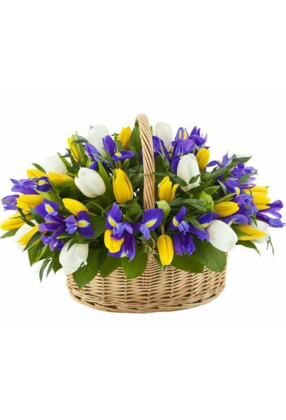 Корзина Ирисы и Тюльпаны