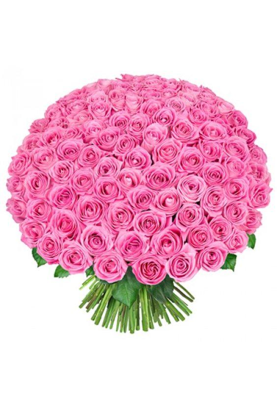 Букет № 27, 101 роза